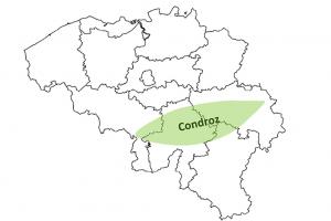 Carte de Belgique avec zone condroz