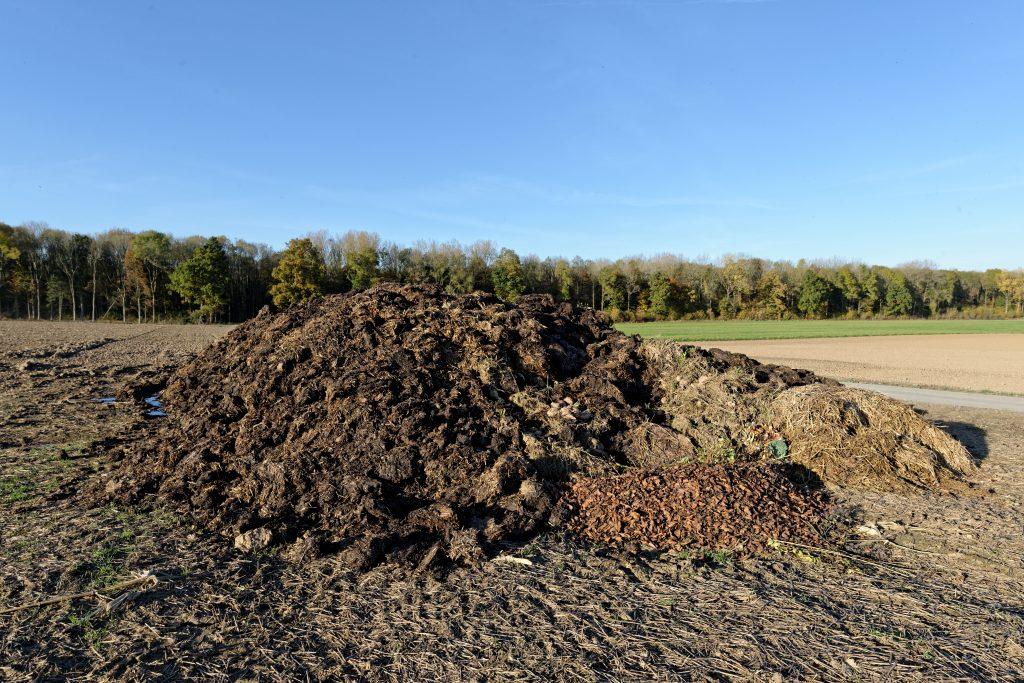 Matière organique: Fumier, déchets de taille, feuilles, pelouse, paille ...